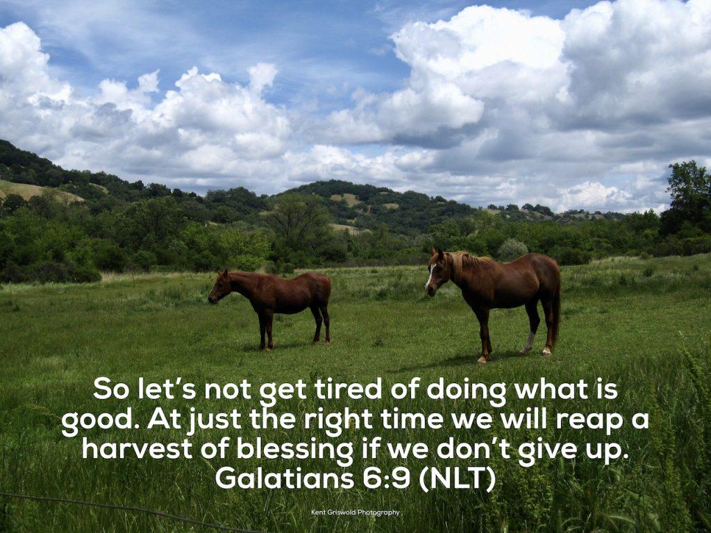 Good - Galatians 6:9
