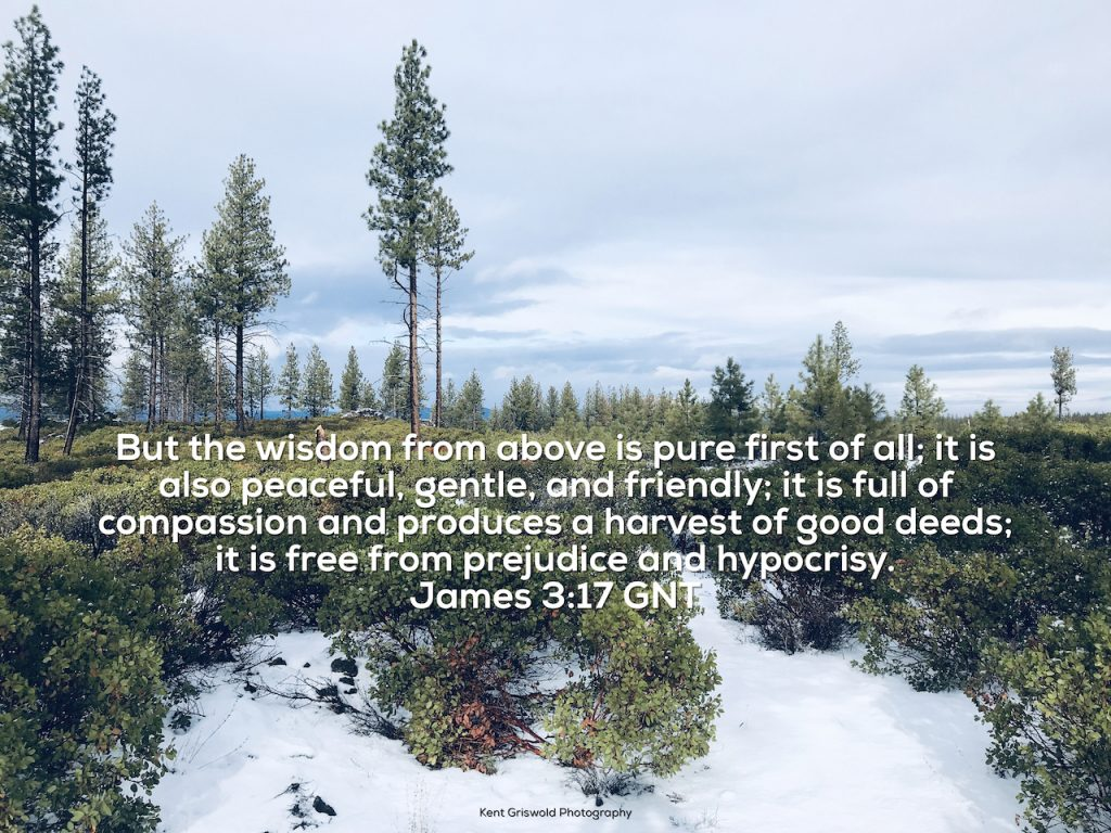 Wisdom - James 3:17