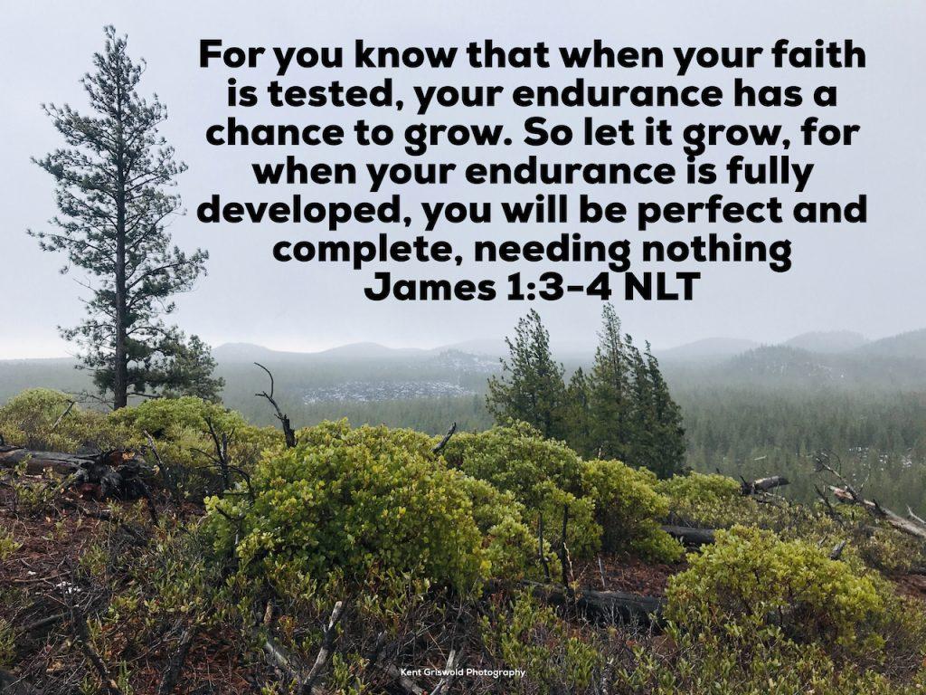 Endurance - James 1:3-4
