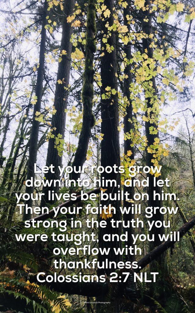 Thankfulness - Colossians 2:7