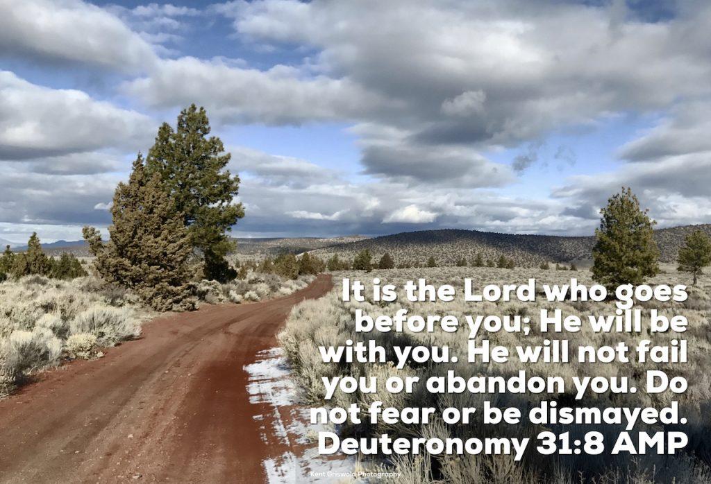 Abandon - Deuteronomy 31:8