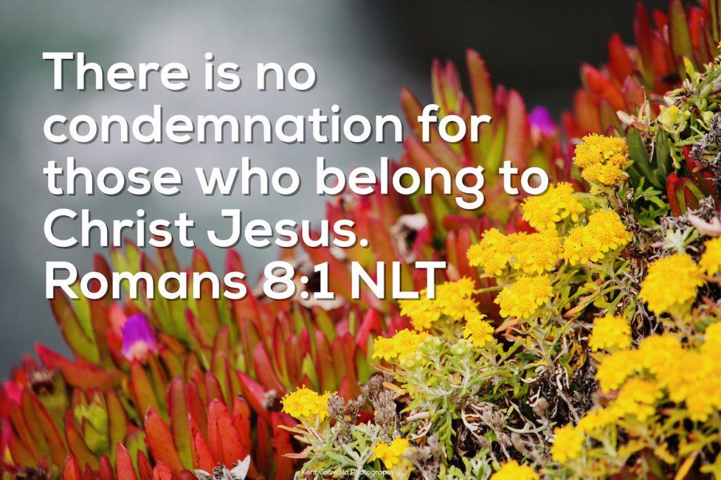 Condemnation - Romans 8:1