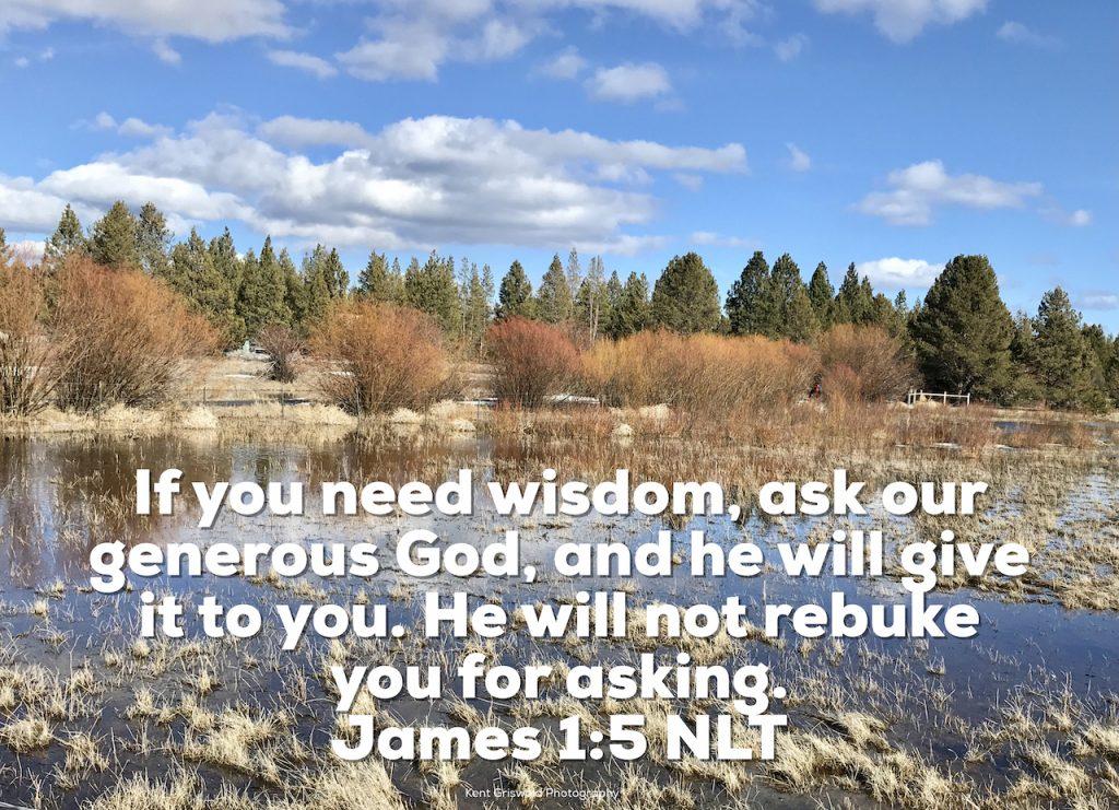 Wisdom - James 1:5
