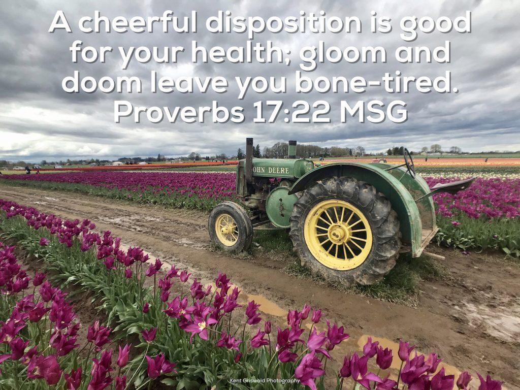 Depression - Proverbs 17:22