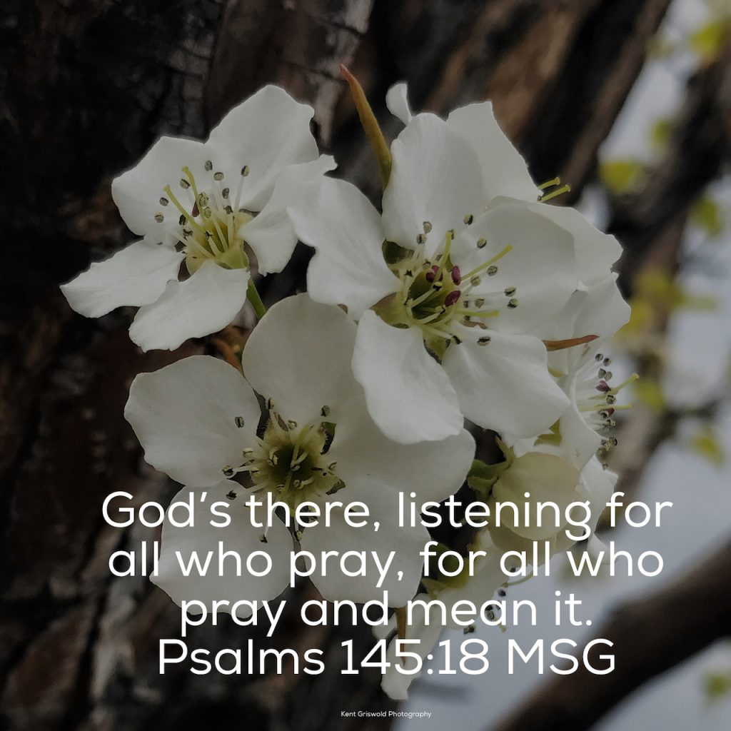 Prayer - Psalms 145:18