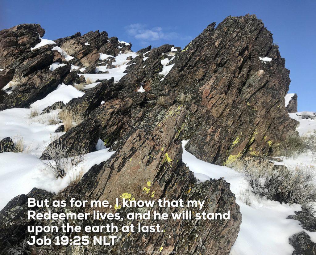 Redeemer - Job 19:25