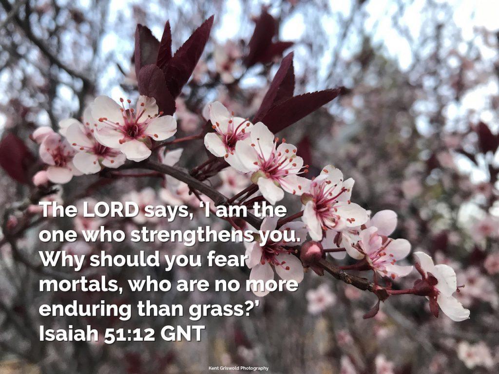 Fear - Isaiah 51:12