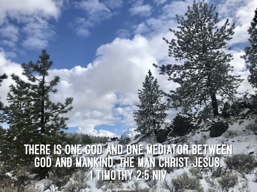 Mediator - 1 Timothy 2:5