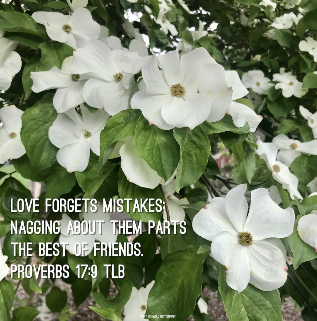 Mistakes - Proverbs 17:9