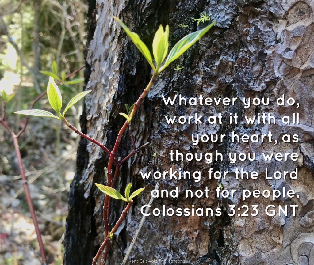Work - Colossians 3:23