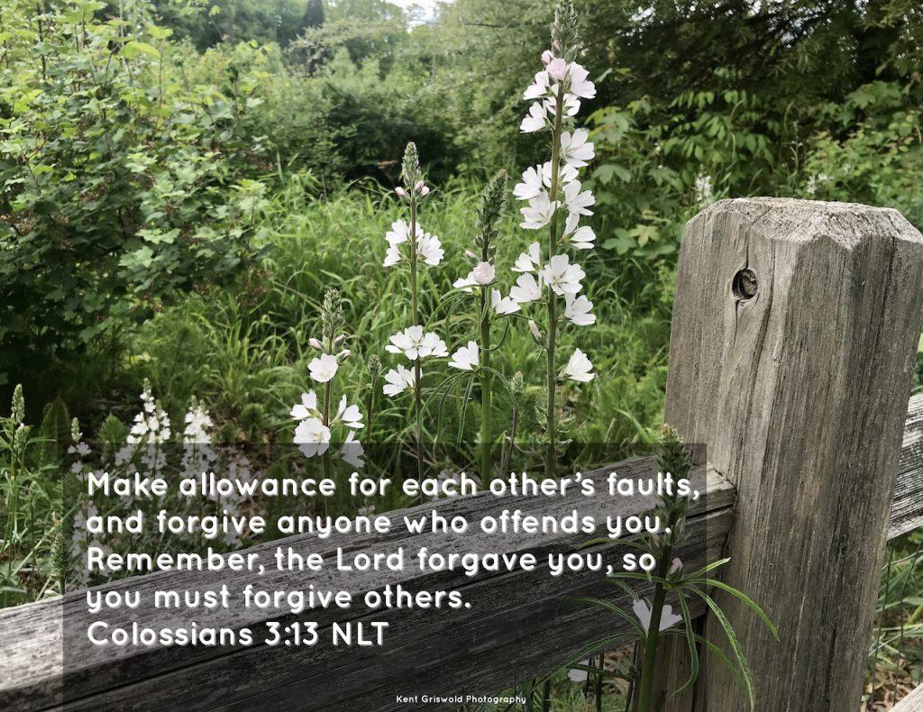 Allowance - Colossians 3:13
