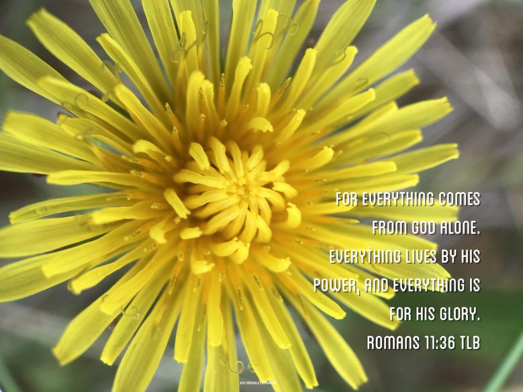 Glory - Romans 11:36
