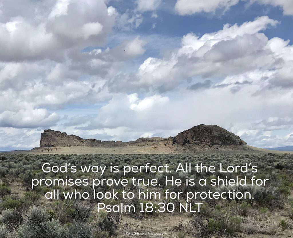 Shield - Psalm 18:30