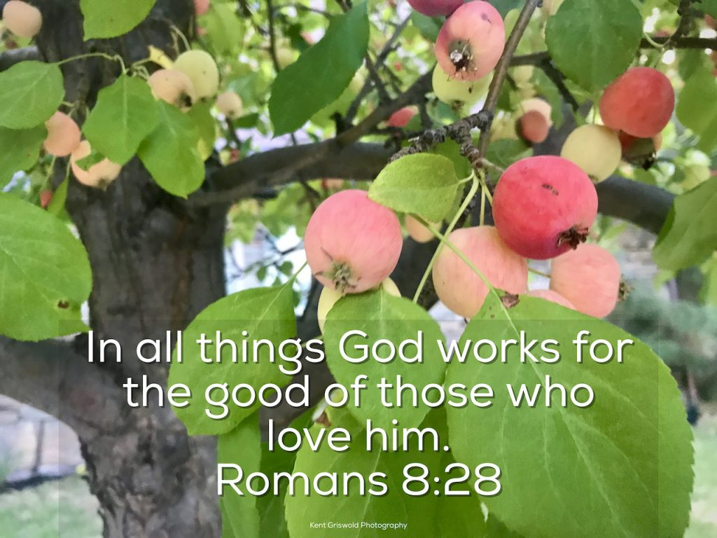 All Things - Romans 8:28