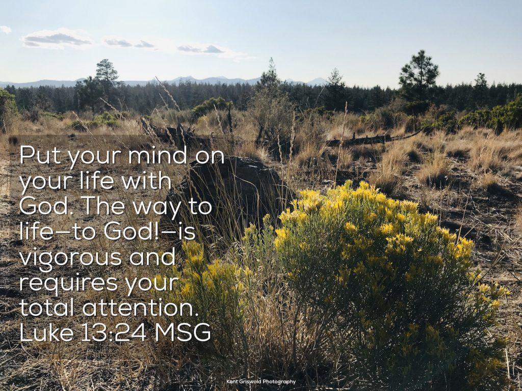 Life - Luke 13:24