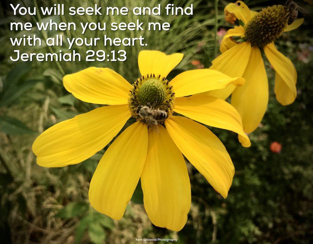 Seek - Jeremiah 29:13