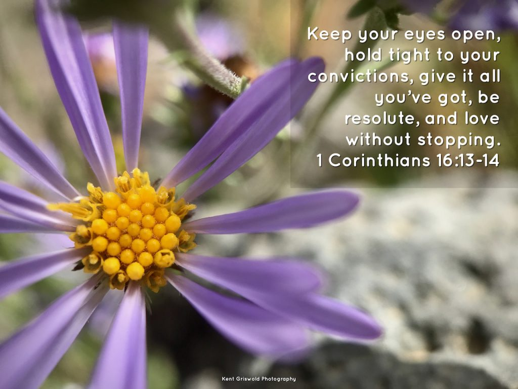 Conviction - 1 Corinthians 16:13-14