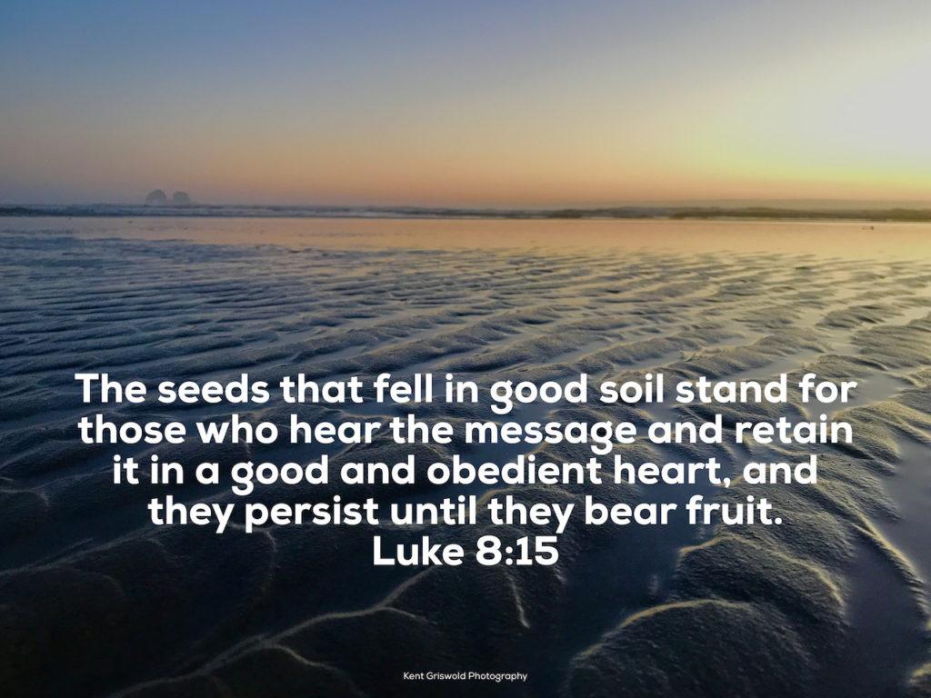 Fruit - Luke 8:15