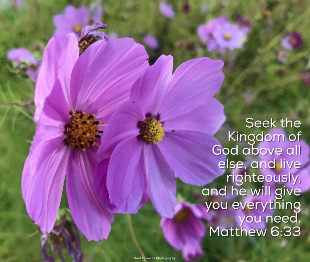 Need - Matthew 6:33