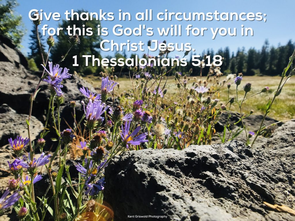 Thanks - 1 Thessalonians 5:18