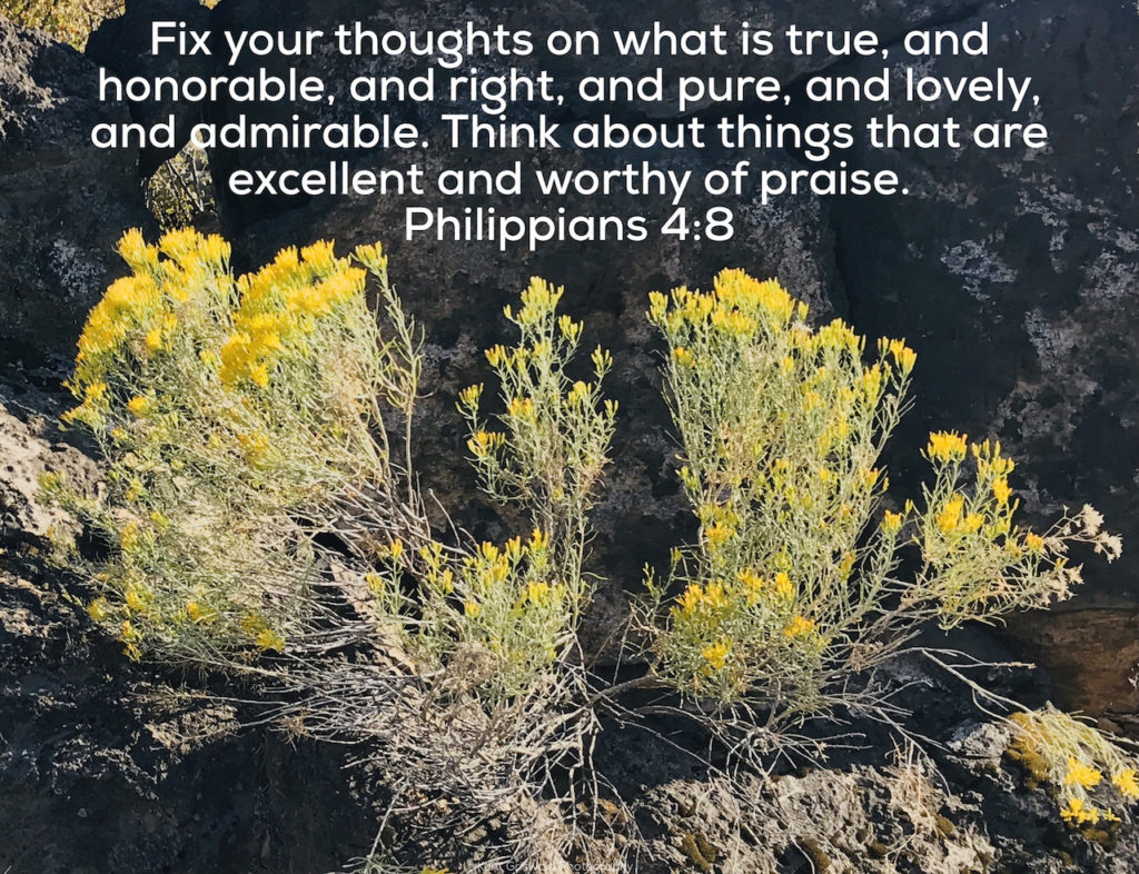 Thoughts - Philippians 4:8