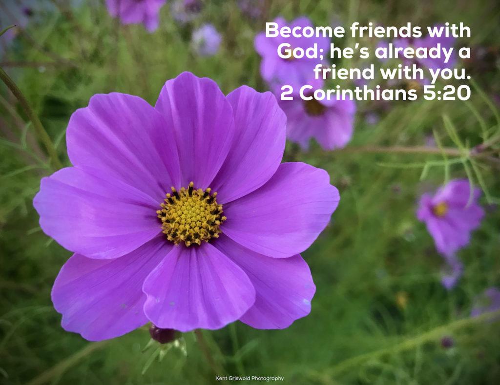 Friends - 2 Corinthians 5:20