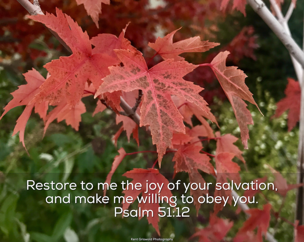 Joy - Psalm 51:12