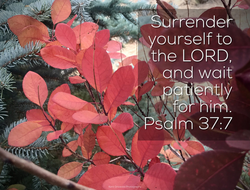 Surrender - Psalm 37:7