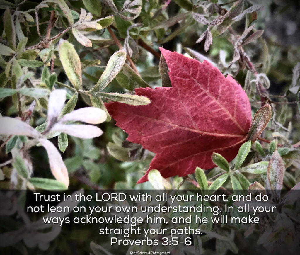 Trust - Proverbs 3:5-6